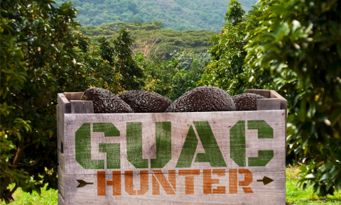 Free Chipotle Guac and Chips Playing the Guac Hunter Game